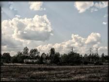 chernobil117