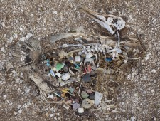 plastik-007