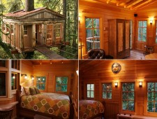 Tree-Houses-For-Adults-11
