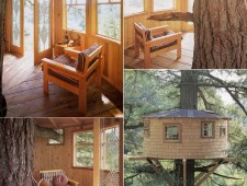 Tree-Houses-For-Adults-12