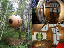 Tree-Houses-For-Adults-13