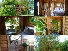 Tree-Houses-For-Adults-14