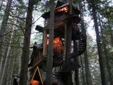 Tree-Houses-For-Adults-2