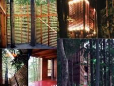 Tree-Houses-For-Adults-3