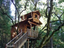 Tree-Houses-For-Adults-4