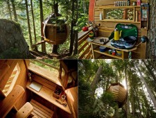 Tree-Houses-For-Adults-5