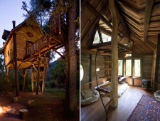 Tree-Houses-For-Adults-6