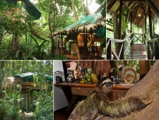 Tree-Houses-For-Adults-8