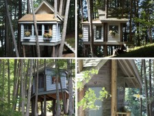 Tree-Houses-For-Adults-9