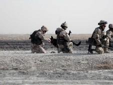 soldierpets39